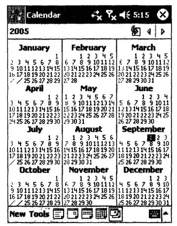 Внешний вид приложения Calendar в режиме просмотра событий за год